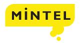 www.mintel.com